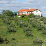 Casa Rural Alquiler Completo
